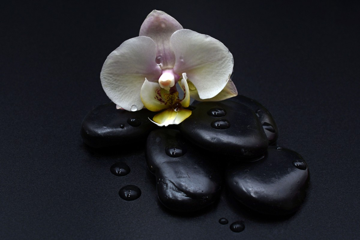 Photo of 4 black stones